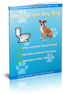 housetrain-and-potty-train-any-dog-ebook