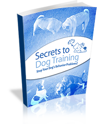 the-secrets-of-dog-training-program